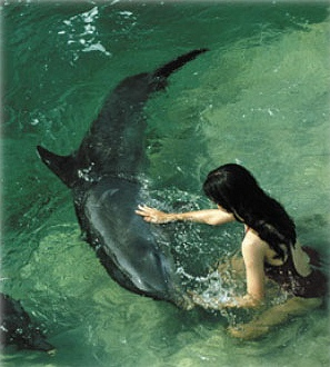 child_and_dolphin.jpg